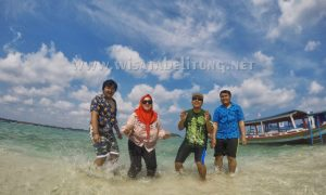 One Day Trip Hopping Island